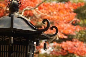 京都で出張ボイトレ教室!